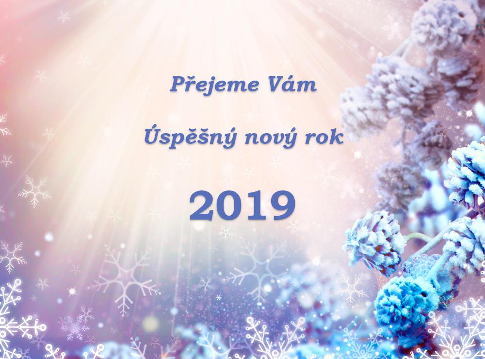 PF 2019 - Přejeme Vám Úspěšný nový rok 2019 | accost.cz